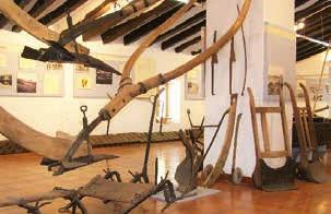 Excursión al Museo del arroz, Valencia