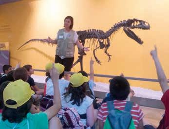 Excursión Museo de Ciencias Naturales de Valencia