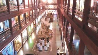 Excursión Museo de Ciencias Naturales de Onda